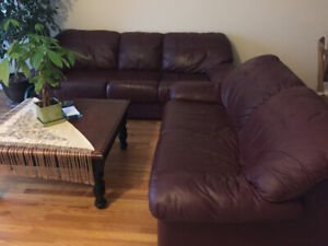 Sofa, Loveseat, coffee table and TV unit