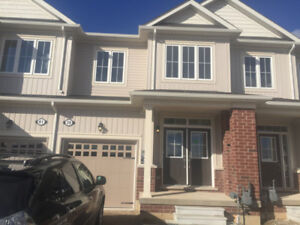 Newly Built Executive Townhome for Lease in Paris Ontario