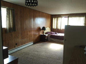 Large Bachelor/Studio suite for rent, Cache Creek BC