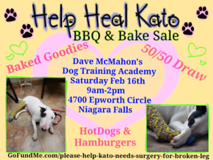 BBQ and Bake sale fundraiser