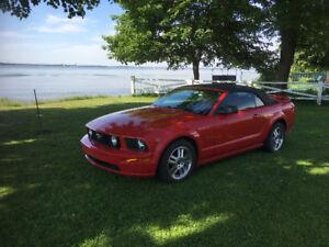 Mustang  GT Convertible 2D