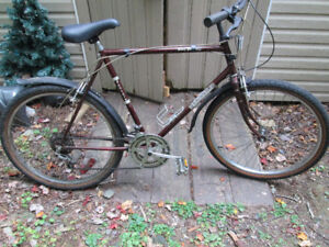 mens 12 speed  bicycle