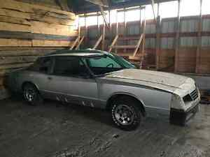 1986 monte carlo abandoned project