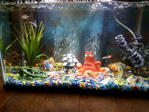 BRAND NEW FISH TANK...WITH FISH.....COMPLETE