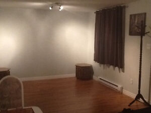 1 Bedroom apartment h/l included in paradise! St. John's Newfoundland image 2