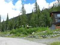 Sun Peaks Ski-in/out Building Lot