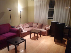 Summer sublet-$550-July- August - downtown - McGill - concordia