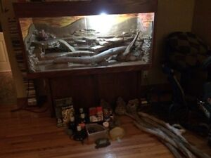 Reptile tank and all accessories!!$500 OBO