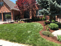 Garden Cleanup and Landscaping