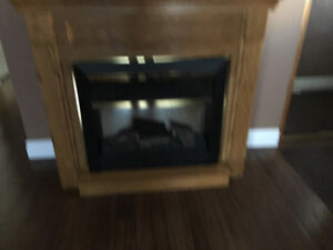 Fire place and housing