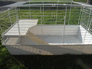 cage pour rongeur a vendre
