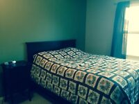 Room for rent by Millbourne mall available now