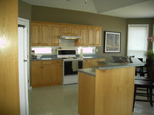 Kitchen Island and all cabinet doors