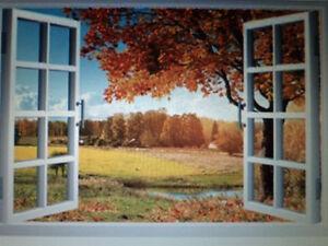 Vinyl Wall Decor Peterborough Peterborough Area image 10