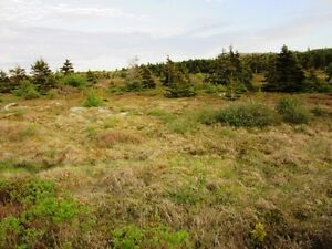 LAND at Mad Rock - Bay Roberts, NL - MLS# 1131965 St. John's Newfoundland image 7