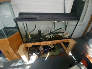 55g tank with lid, light, stand, filter and a few things