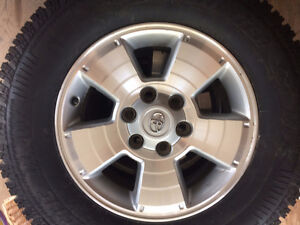 Winter Tires on Alloys for Toyota Tacoma