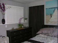 Fully Furnished One Bedroom basement suite