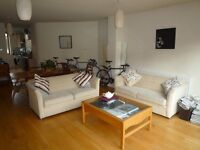 Large Double Room in Lovely Duplex with Garden