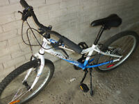 NICE BICYCLE, RECENT MODEL (AGES 6 TO 12/13)