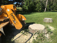 STUMP GRINDING / STUMP REMOVAL * prompt service / fully insured