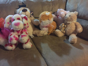 Cute teddy bears and plush toys from a clean home London Ontario image 1
