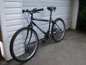 Two bikes for $25!