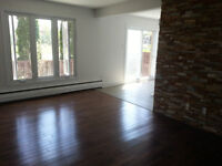 Beautiful spacious townhouse to rent for the month available now