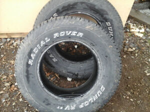 Dunlop RV xt 17 in  tires for sale