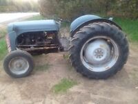 Ferguson tractor NO NEED FOR IT MAKE AN OFFER