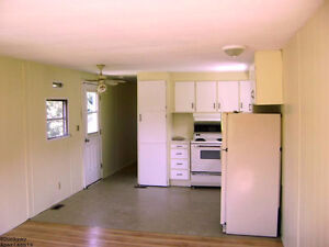 Private dog friendly 3 bed older mobile- Salmon River