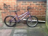Maxima crush mountain bike