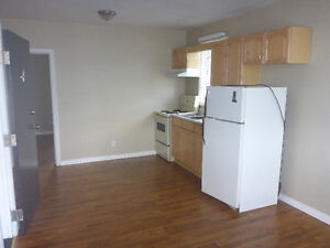 Small 1-bedroom, perfect for mature student - available Sept 1