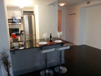 Bachelor - Studio at Downtown, Byward market - Ottawa University