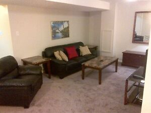 2 Bedroom basement suite down town fully furnished