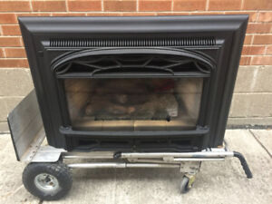 Valor Gas Fireplace Insert