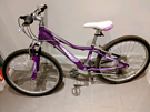 Giant childs girls MTB bike shimano 20 inch wheels