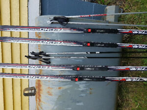 Grip tecno pro active 8 skis 205 and 184.