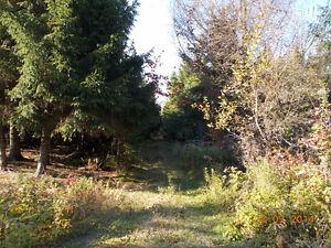Beau terrain à vendre à Notre-Dame-des-Bois
