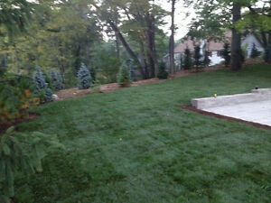 Landscaping & Lawncare London Ontario image 1