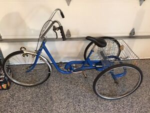 Tricycle adulte