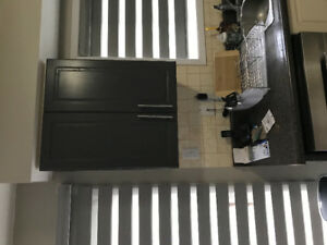 MDF Kitchen Cabinets
