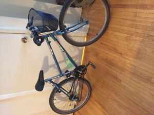Girls bycicle for sale 18 speed Raleigh portage