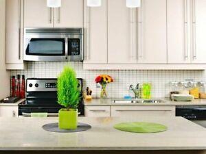 Granite Marble Quartz Countertops ★ Bathroom & Kitchen ★ Best$$$