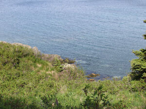 BACON COVE RD, AWESOME OCEAN VIEWS..BACON COVE.. St. John's Newfoundland image 12