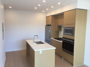 Awesome one bed Kits apartment for rent - available now!