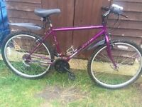 """19"""" Townsend bicycle. Inc new gear shifters, lights & mudguards. Free delivery. D lock availa"""