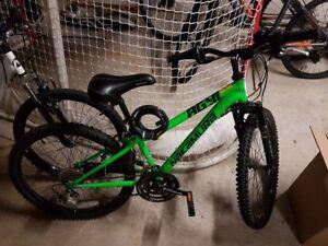 "Pristine Nakumura bike (24"")"