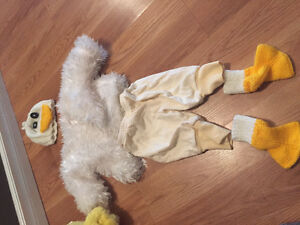 Baby 4-8 months chicken costume