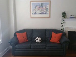 A nice green leather sofa-bed